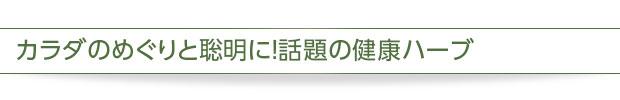 イチョウ葉&緑茶ポリフェノール